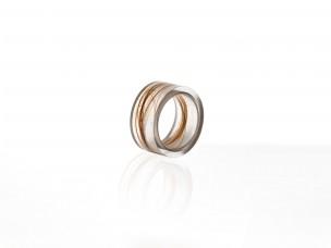 ring_DNA